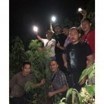 Kapolres Kerinci Pimpin Penemuan Ladang Ganja 1 Hektare, Seorang Wanita Diamankan